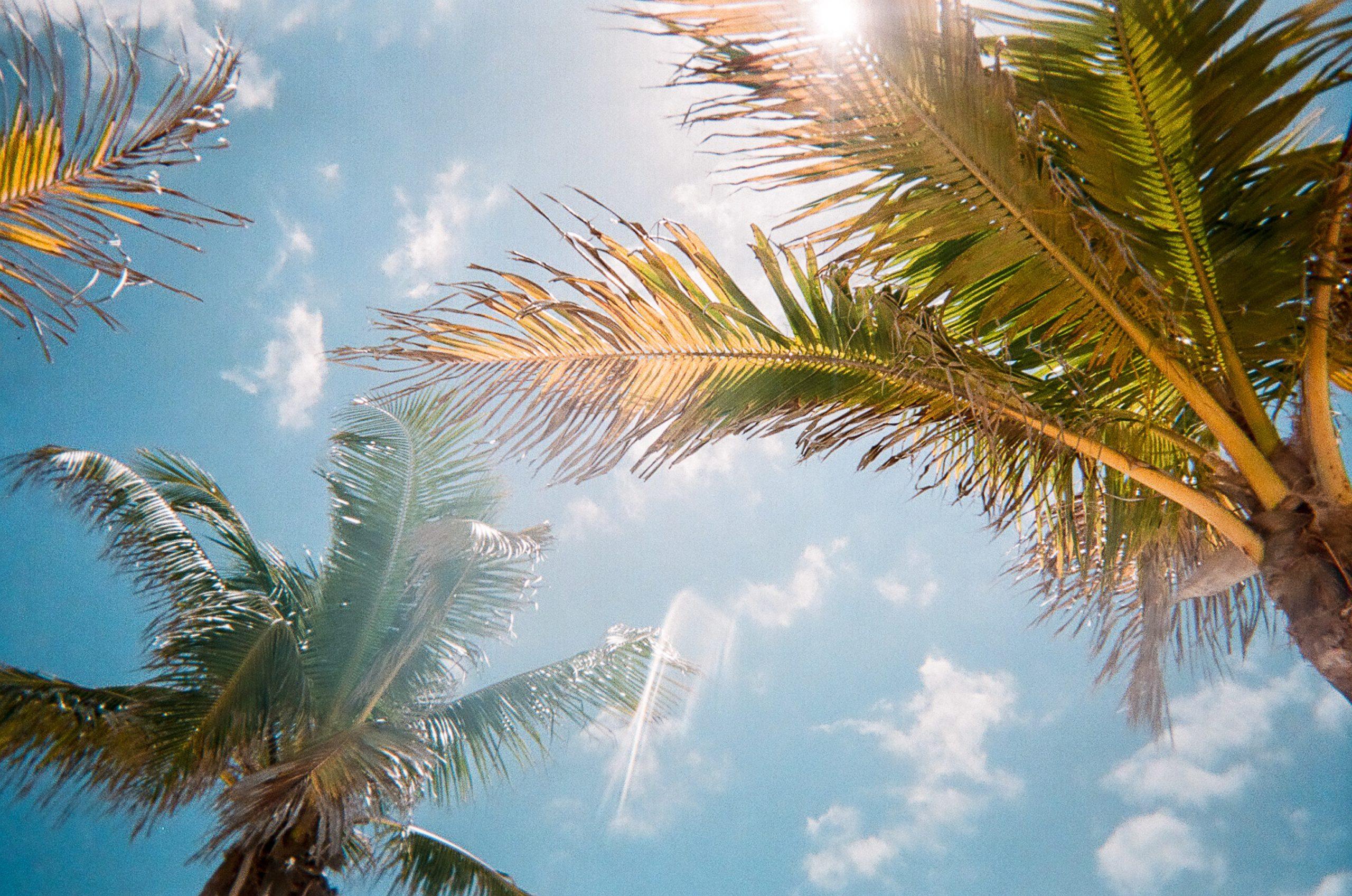 vakantiewoning huren Suriname